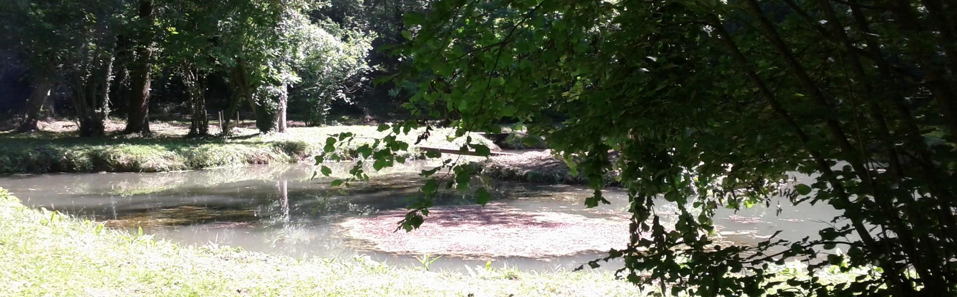 """Réglementation de l'aire de l'étang du lieudit """"la fontaine du bellay"""""""